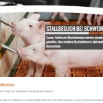 Stallbesuch.de