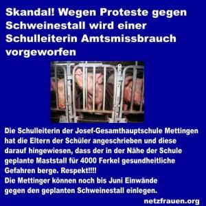 netzfrauen_mettingen_stall_schule