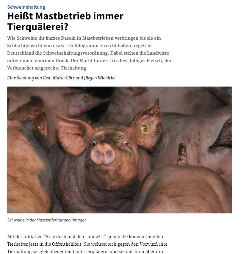 Snapshot von deutschlandfunk.de