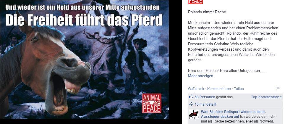 animalpeace_pferd_2015_07_ii