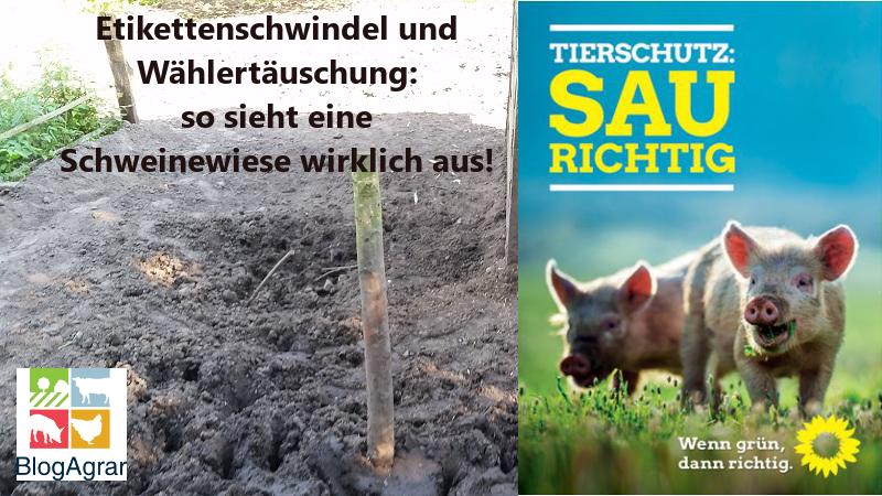 schweinewiese_wahlplakat2