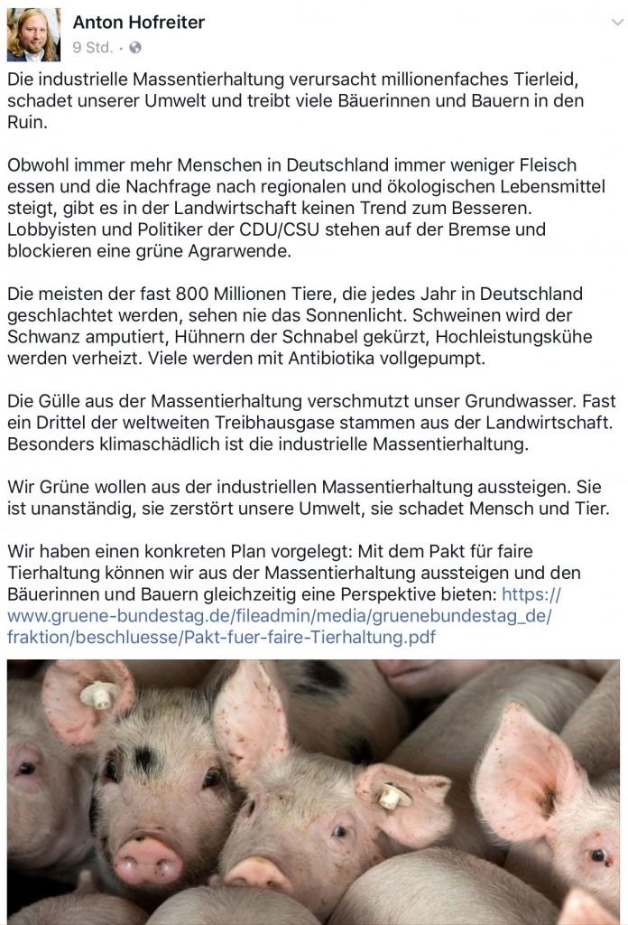 Anton Hofreiter zur Massentierhaltung bei Facebook