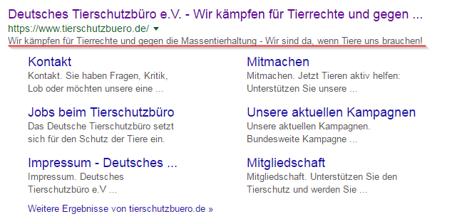 Screenshot Google Adword-Kampagne