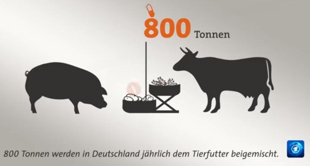 Screenshot Tagesschauvideo #gutzuwissenFleisch