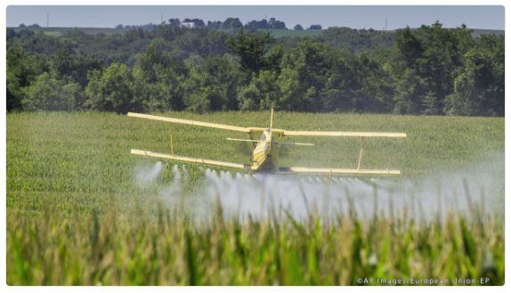 #EPlenum fordert endgültiges Verbot von #Glyphosat bis Ende 2022. Weitere Infos findest du in der Pressemitteilung → http://bit.ly/2yKTWnH