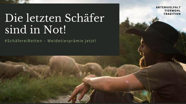 Die letzten Schäfer sind in Not! Mit einem Klick geht´s zur Petitionsseite von change.org
