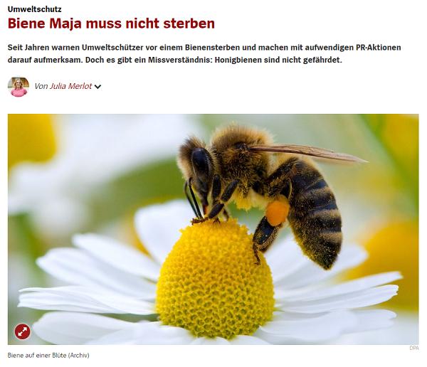 Biene Maja muss nicht sterben Seit Jahren warnen Umweltschützer vor einem Bienensterben und machen mit aufwendigen PR-Aktionen darauf aufmerksam. Doch es gibt ein Missverständnis: Honigbienen sind nicht gefährdet.