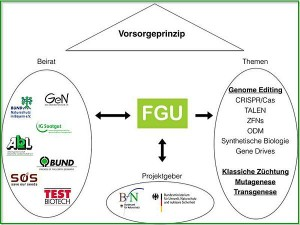 Graphik FGU