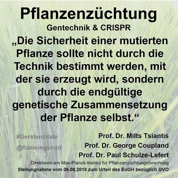 Pflanzenzüchtung, Gentechnik, CRISPR: Die Sicherheit einer mutierten Pflanze nicht durch die Technik bestimmt werden, mit der sie erzeugt wird, sondern durch die endgültige genetische Zusammensetzung der Pflanze selbst