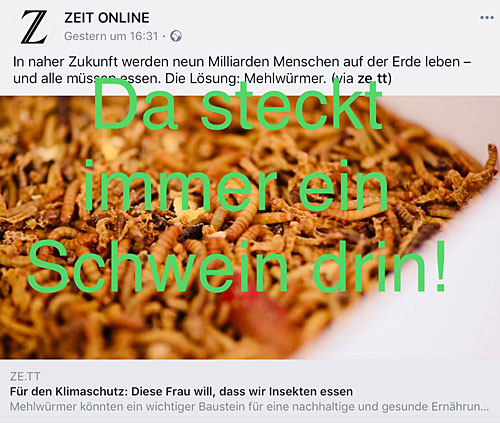 Screenshot Zeit Online