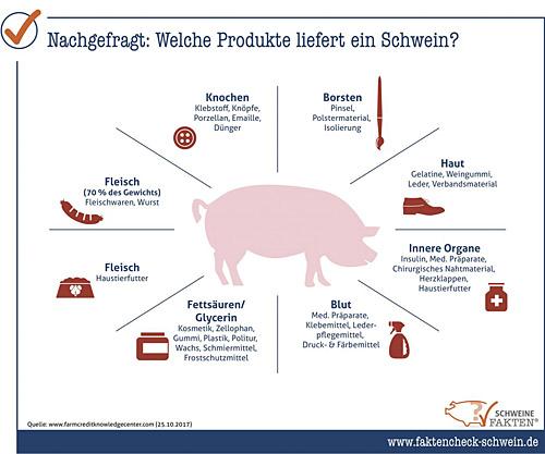Screenshot Verwertung Schwein