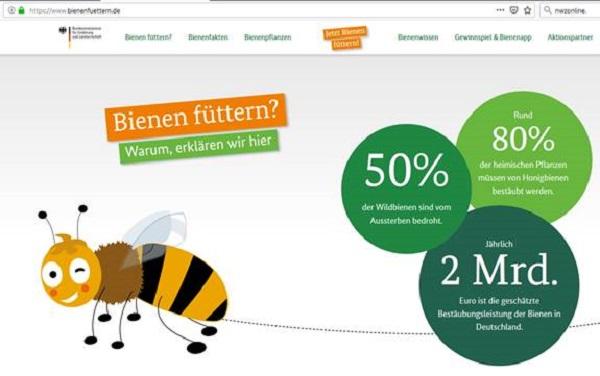 Bienenfüttern