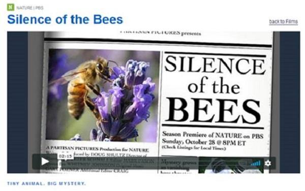 die Stille der Bienen
