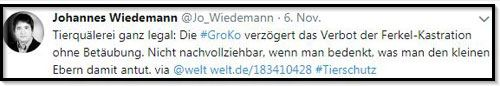 Screenshot Tweet Wiedemann