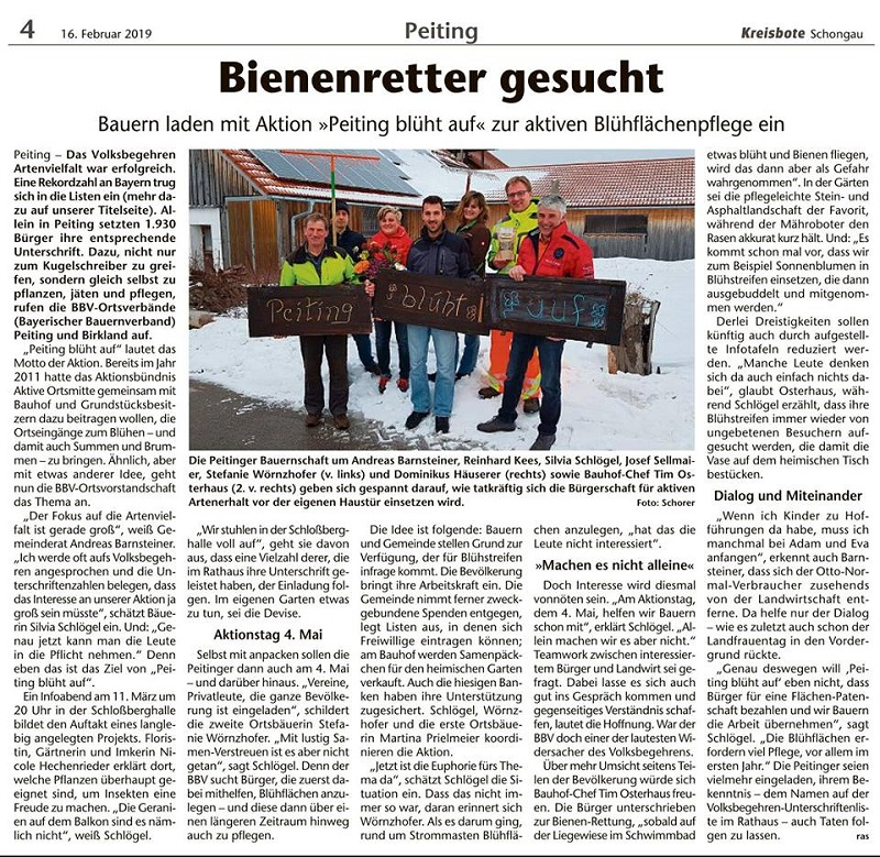 "Zeitungsausschnitt ""Peiting blüht auf"""