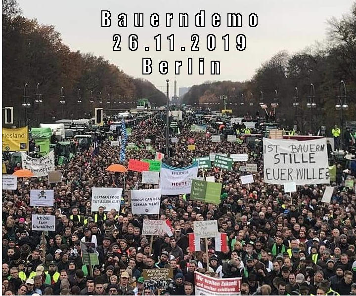 zehntausende Demonstranten versammelten sich zwischen Siegessäule und Brandenburger Tor am 26.11.2019