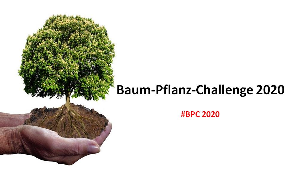 Baum-Pflanz_challenge