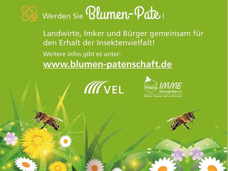 Werden Sie Blumen-Pate! Landwirte, Imker und Bürger gemeinsam für den erhalt der Insektenvielfalt!
